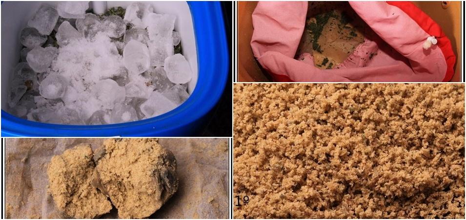 ¿Cómo hacer ice o lator? Claves para aprender cómo extraer resina del cultivo de marihuana.