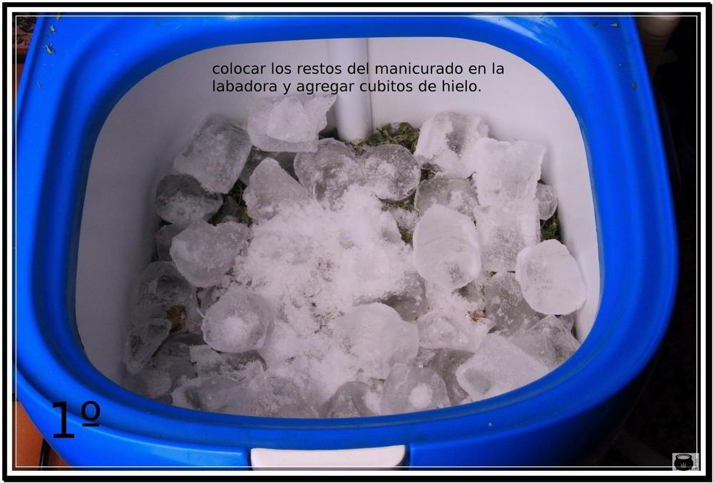 1- Colocar los restos del manicurado en la lavadora y agregar cubitos de hielo: Cómo extraer resina de la cosecha de tu cultivo de marihuana - Cómo hacer Ice o Lator