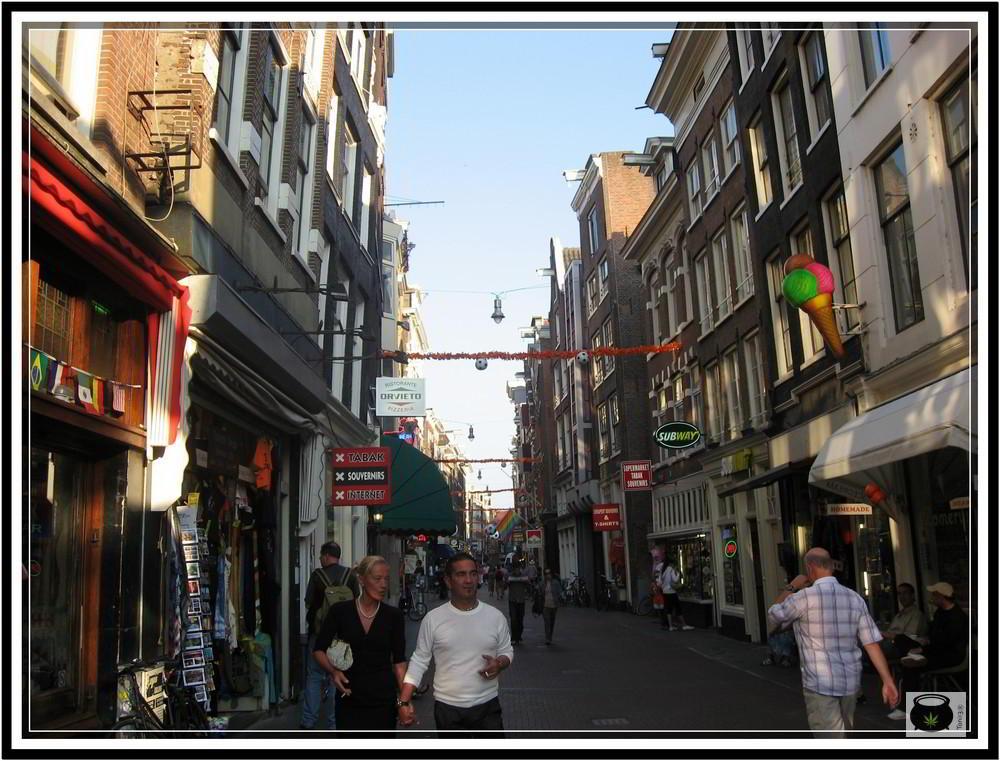 AMSTERDAN-2010012