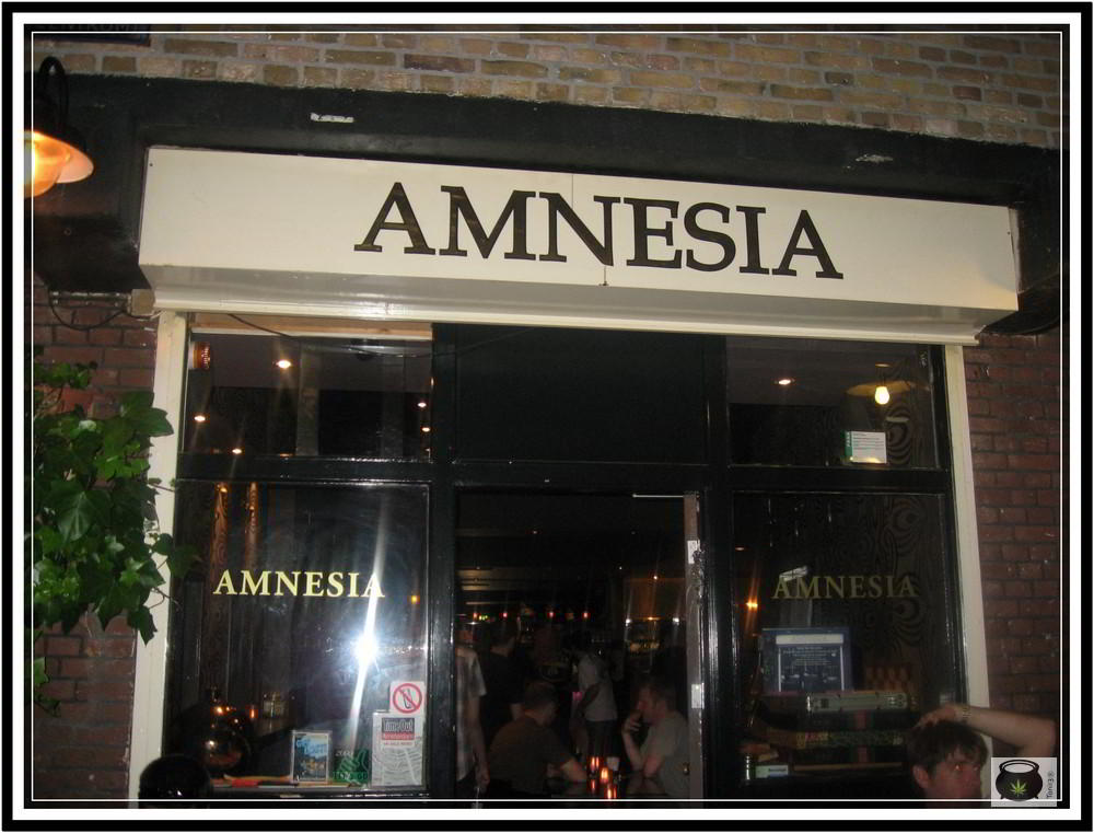 AMSTERDAN-2010015
