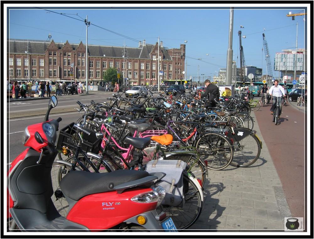 High life 2010 Amsterdam - Reportaje de Toni13 12