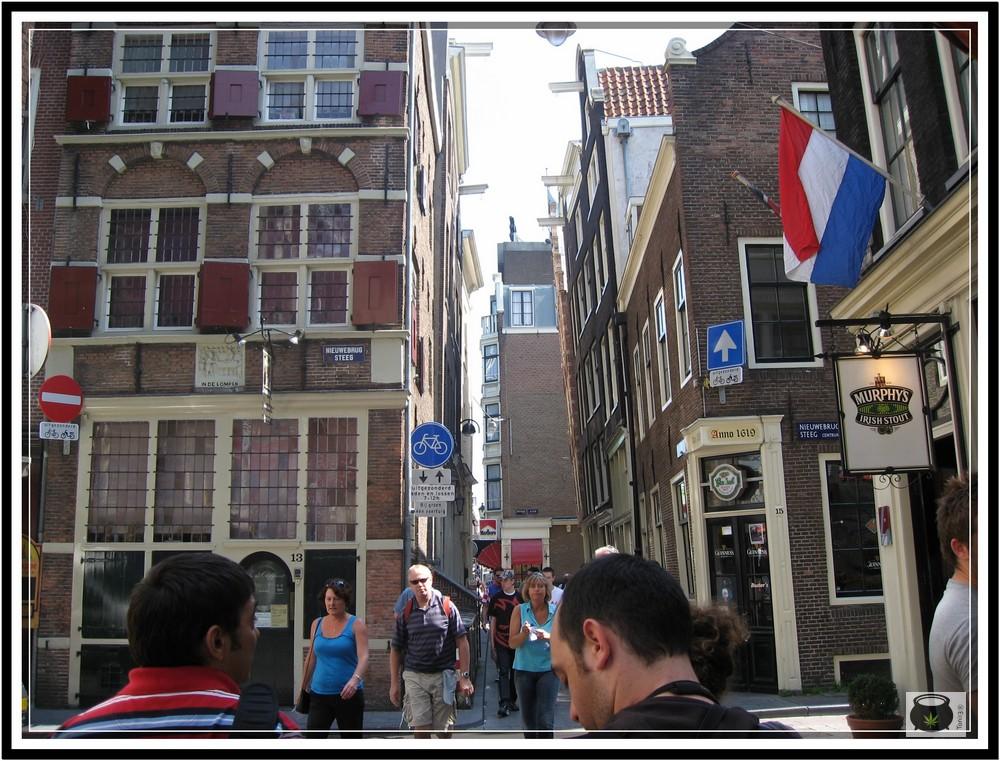 High life 2010 Amsterdam - Reportaje de Toni13 6