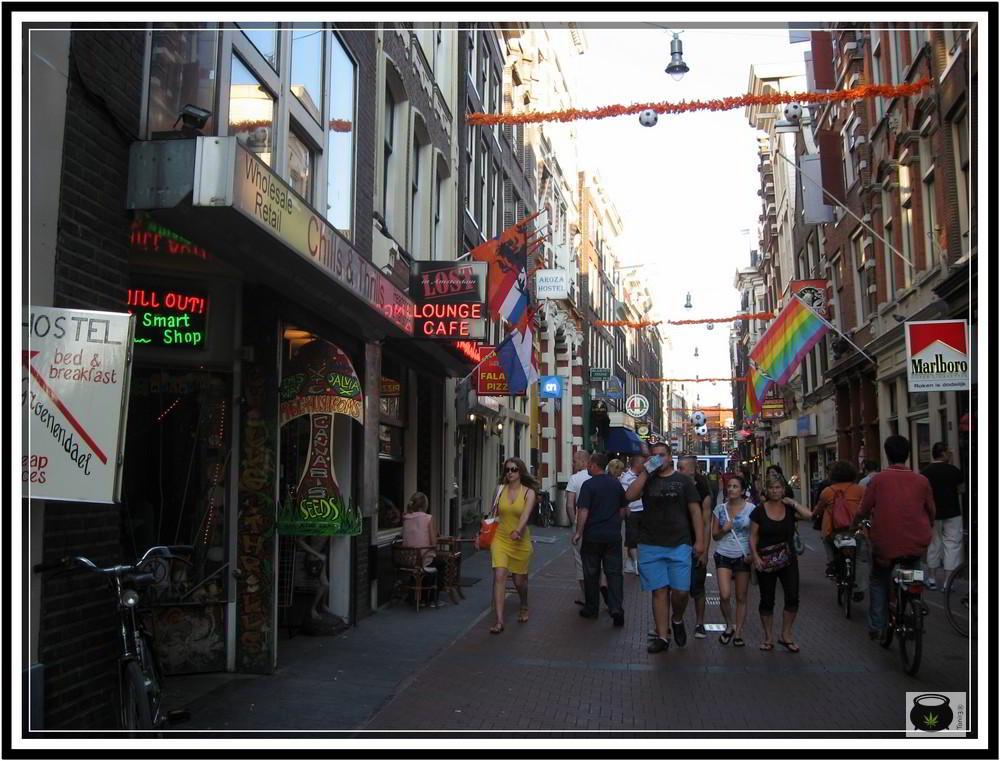 High life 2010 Amsterdam - Reportaje de Toni13 8