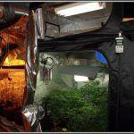 Elementos de cultivo de marihuana de interior, espacios