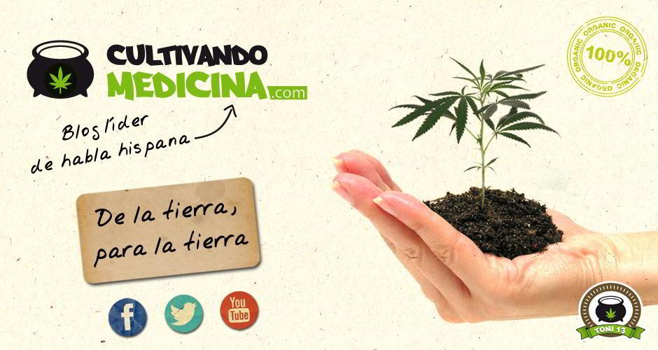 Cultivando medicina.com