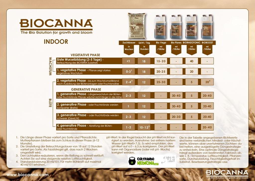 duengeschema_biocanna_indoor_big