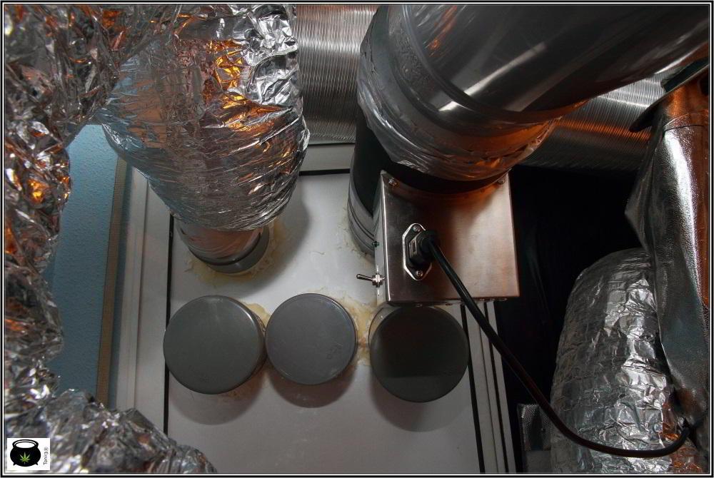 Cómo instalar un sistema de doble extracción en cultivo de marihuana interior