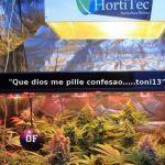 Articulo Soft Secrets 2014-6    «Cultivos del siglo XXI»
