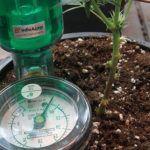 Cultivando con una raíz artificial en una planta de marihuana – Tensiómetro