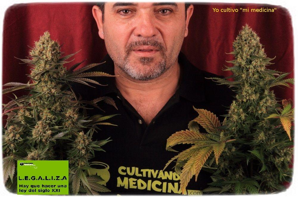 Toni13 marihuana legalizacion