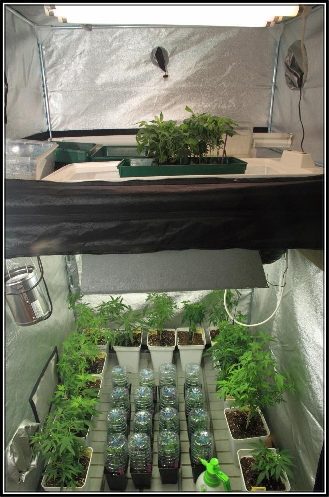 armario con 2 zonas de iluminación diferentes. Bajo consumo y tubo fluorescente.