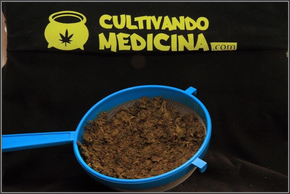 tintura-de-marihuana-preparacion-11
