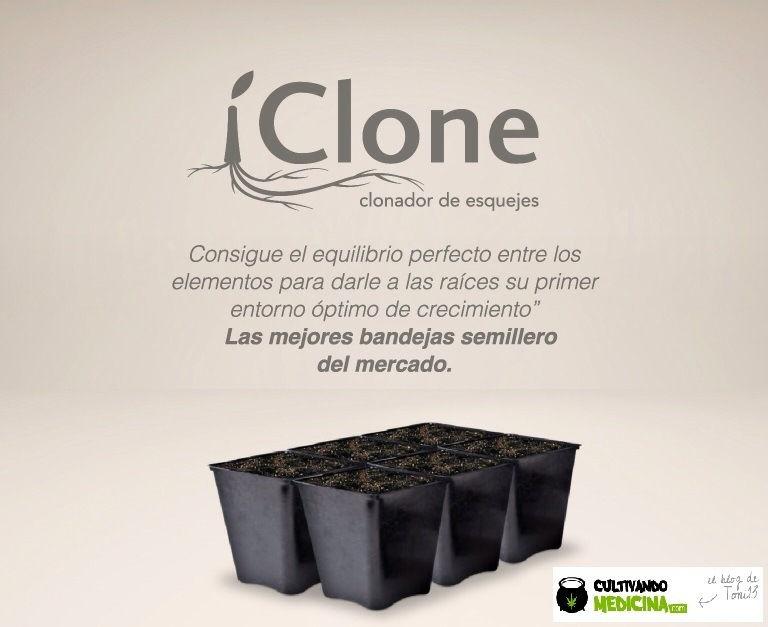 iclone-semillero-esquejes-marihuana-1