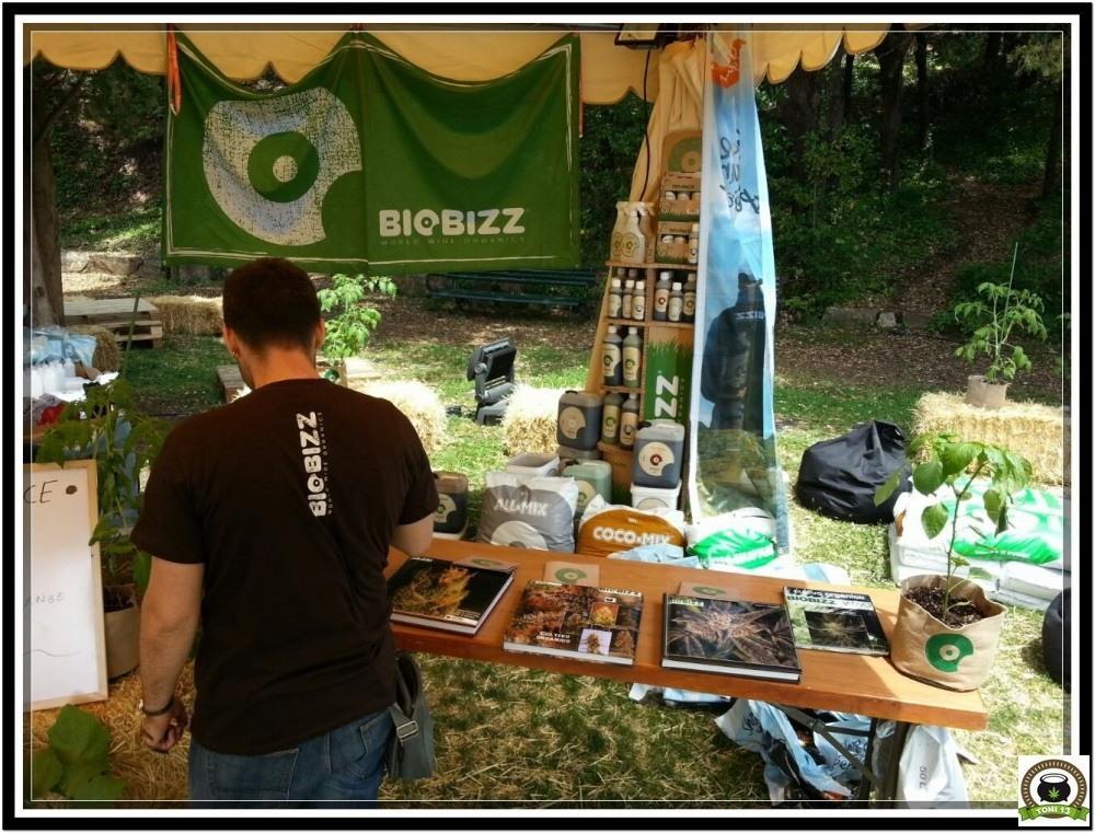BiocannabisCup-2015-toni13-10-biobizz-albums-cultivo-marihuana