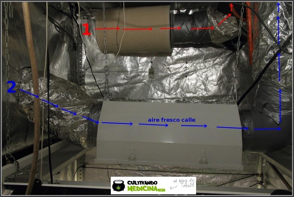 cómo instalar un sistema de doble extracción en cultivos de marihuana 2