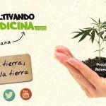 Novedades Cultivandomedicina.com