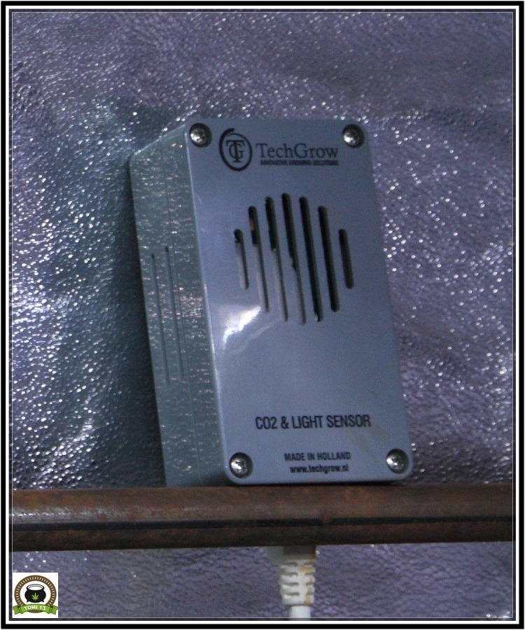 TechGrow CO2 & Light Sensor en cultivo de cannabis