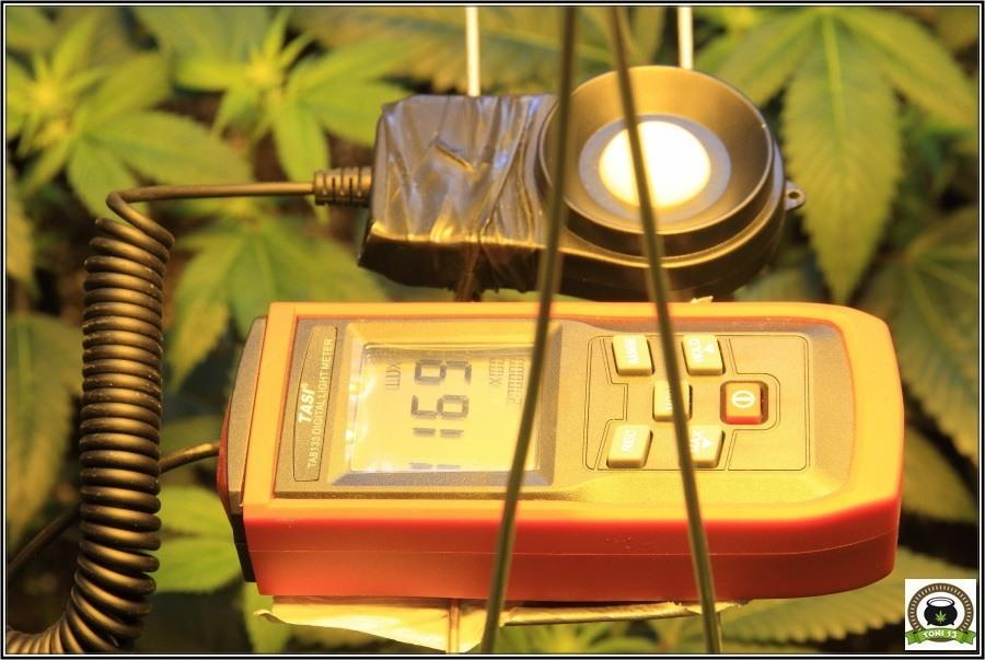 Medida con luxométro del balastro electrónico regulable Solux