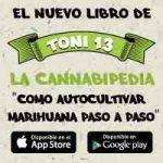 """""""La Cannabipedia"""", una guía rápida para aprender a cultivar marihuana"""