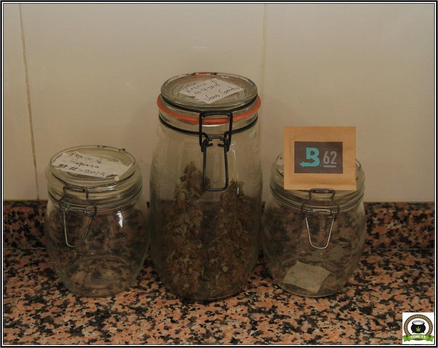 Boveda 62%: Para el almacenamiento adecuado de marihuana-1