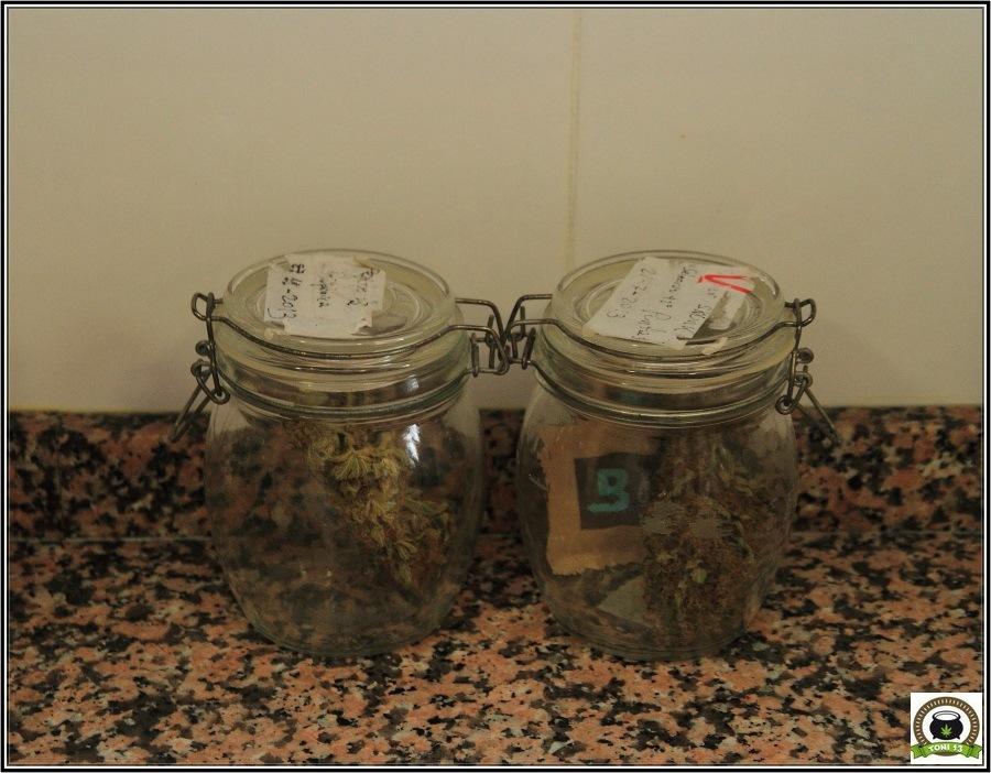 Boveda 62%: Para el almacenamiento adecuado de marihuana-2