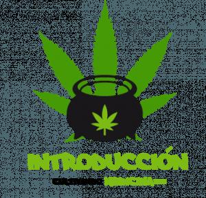 Introducción al cultivo de marihuana