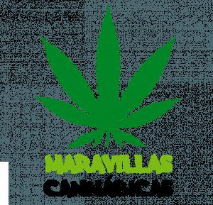 Maravillas cannábicas: Variedades de marihuana, variedades de cannabis, variedades de esquejes de marihuana