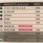 3- Seguimiento marihuana LEC Criti-13: Crecimiento primeros 12 días