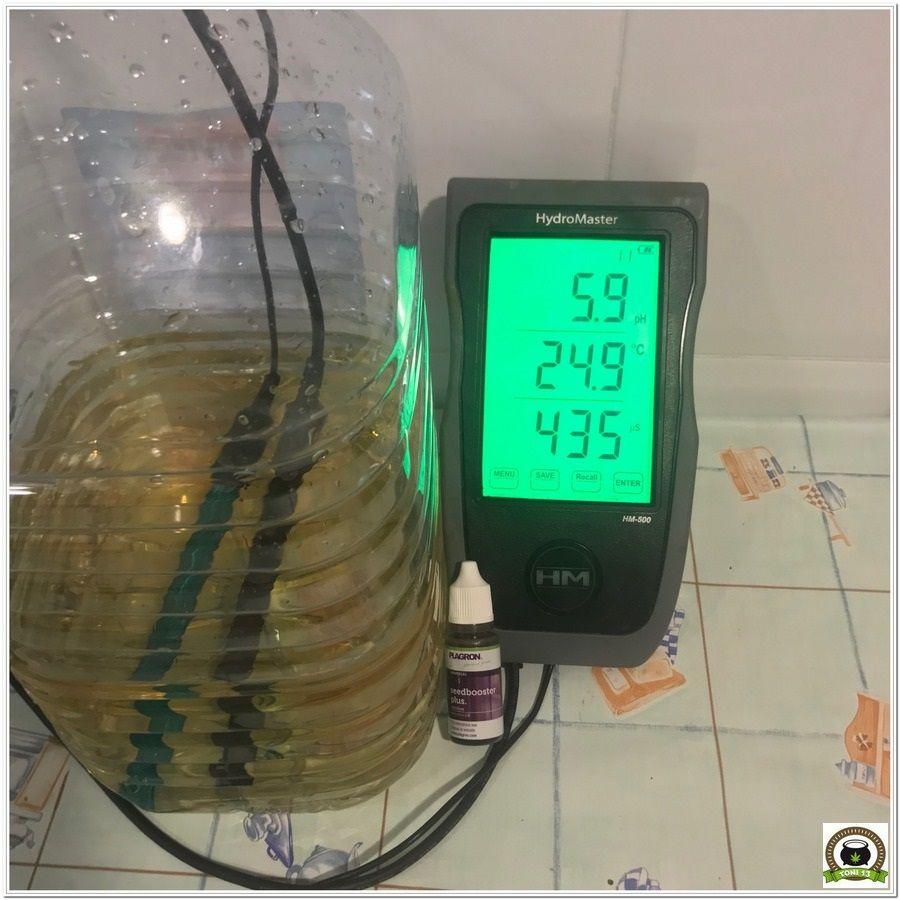 1- Cultivo marihuana medicinal interior con abonos Cyco 1