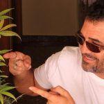 Cómo cambiar el fotoperiodo del cultivo indoor de marihuana