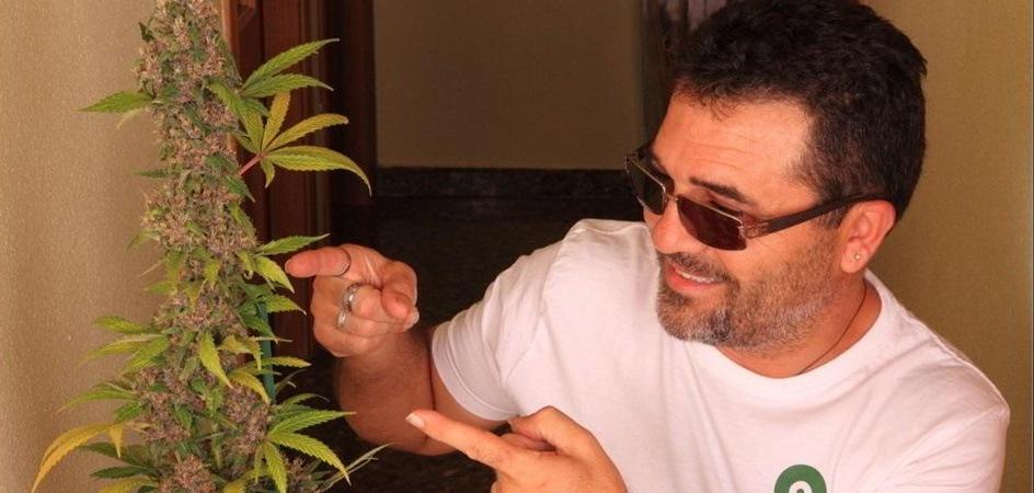 ¿Cómo cambiar el fotoperiodo del cultivo indoor de marihuana?