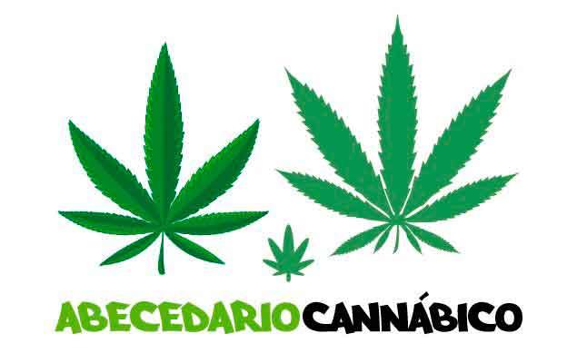 Abecedario para cultivar marihuana