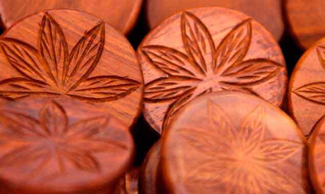Blog de cultivo de marihuana. Blog cultivo marihuana medicinal.