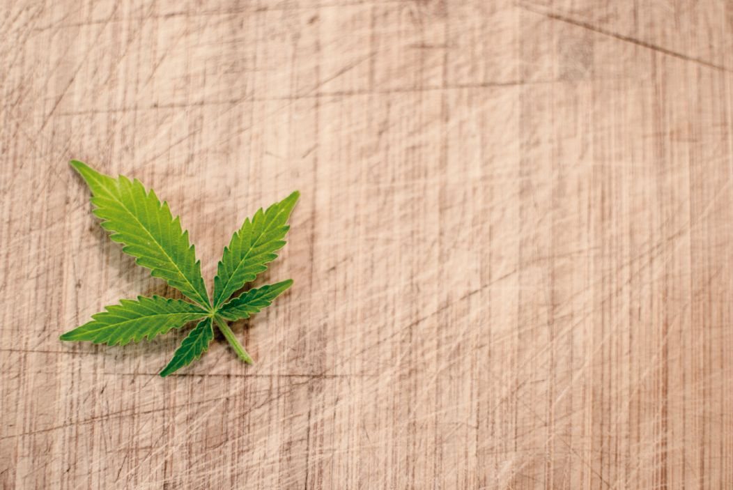 Contacto blog cultivo marihuana