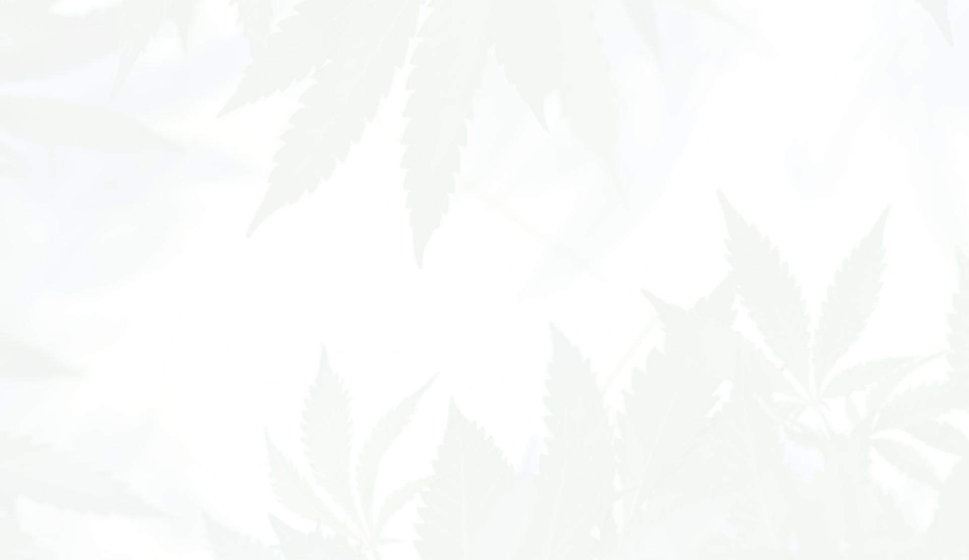 Cultivar marihuana en casa.