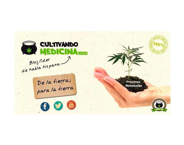 Seguimiento Mastro: Cultivo de marihuana interior.