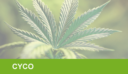 Tabla Nutricional CYCO. Tabla CYCO Marihuana.