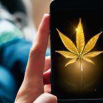 Las 7 mejores aplicaciones de marihuana para móvil y tablet