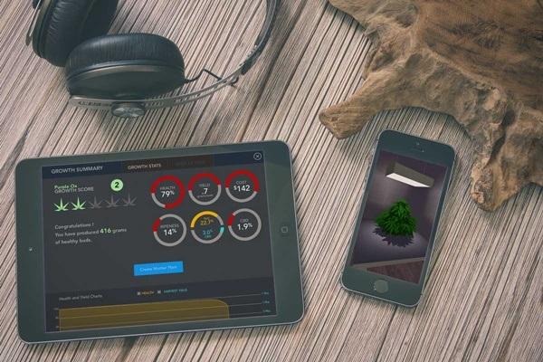 SimLeaf: Aplicación juego de marihuana. App de simulación de cultivo de Marihuana.