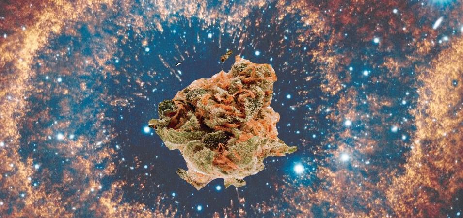 Marihuana en el espacio exterior. Cannabis en el espacio.