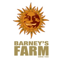 barneys farm banco semillas marihuana