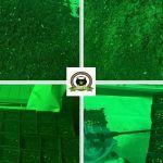 2-Barney's Farm y toni13: Automáticas I