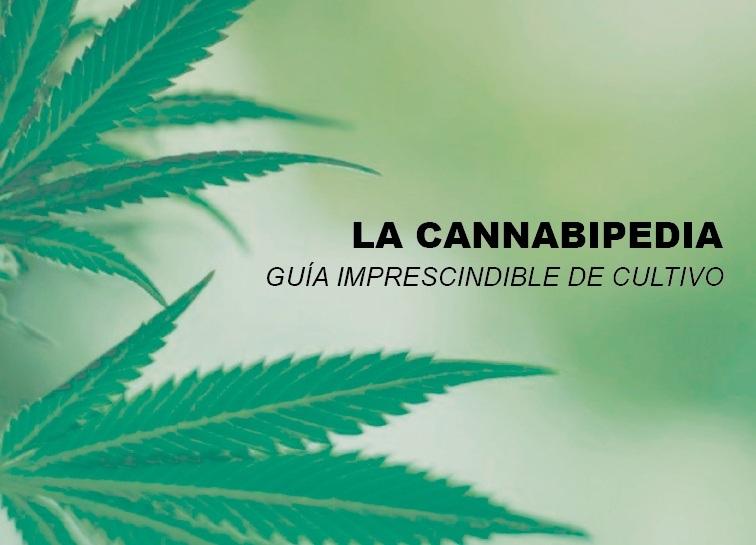 la-cannabipedia-guia-imprescindible-cultivo-marihuana-cannabis-1