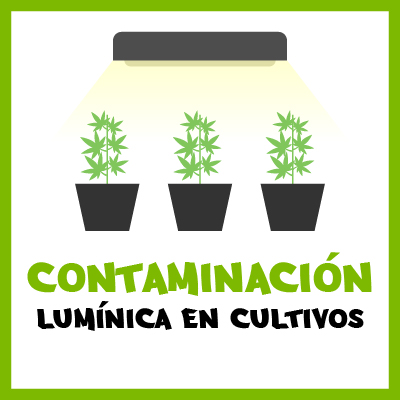 Contaminación lumínica en cultivos. Por Toni13